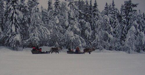 Bonjour Laponie (suite 2)