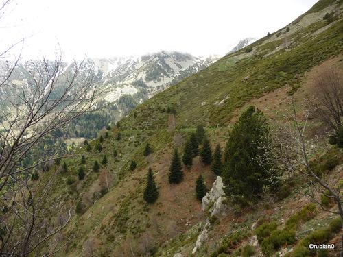 GR10 à flanc de montagne