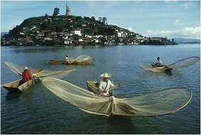 L'île des pêcheurs de papillons ...