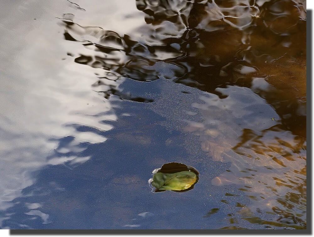 Indochine demande à la luuuu--u--neu et moi je demande à la rivière, quand je n'y comprends plus rien