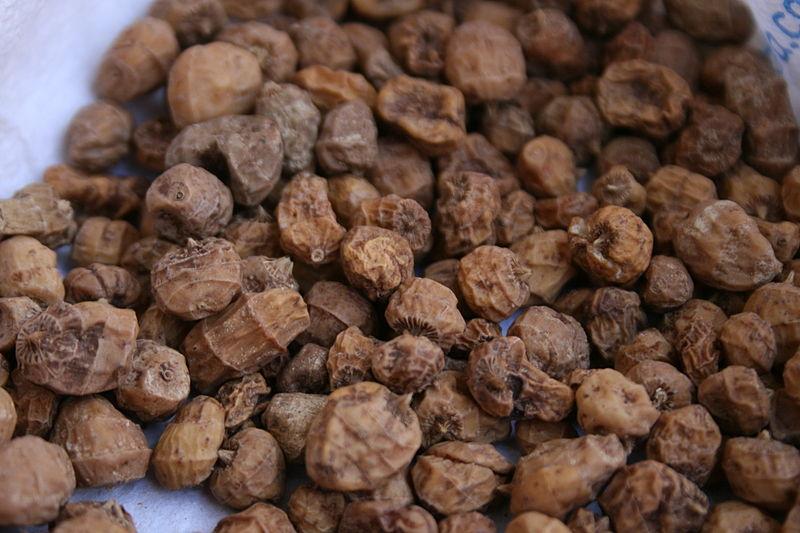 Tubercules du souchet comestible Cyperus esculentus