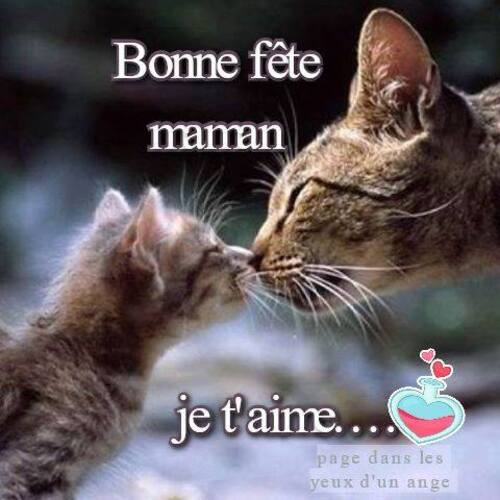 belle journée de fête des mères à toutes ...