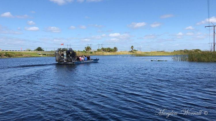 Floride : Everglades