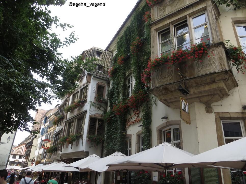 Strasbourg été 2017 - Quartier Cathédrale