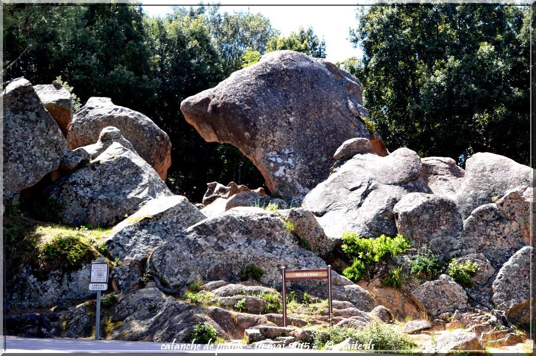 Calanche di Piana - Corse - La tête de chien