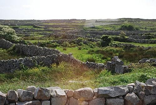 Connemara- Murets