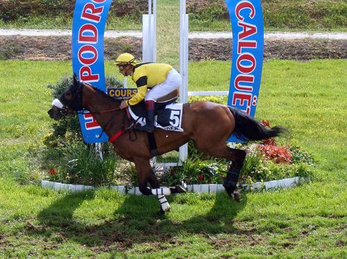 Hippodrome de Loudéac - Réunion du 6 mai 2017