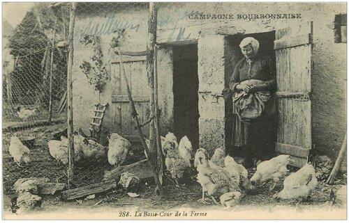 09 - Les poules dans les cartes postales