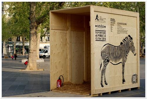 Des animaux sauvages en liberté à Paris ?