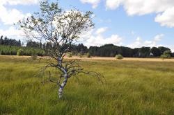 Un site naturel exceptionnel...