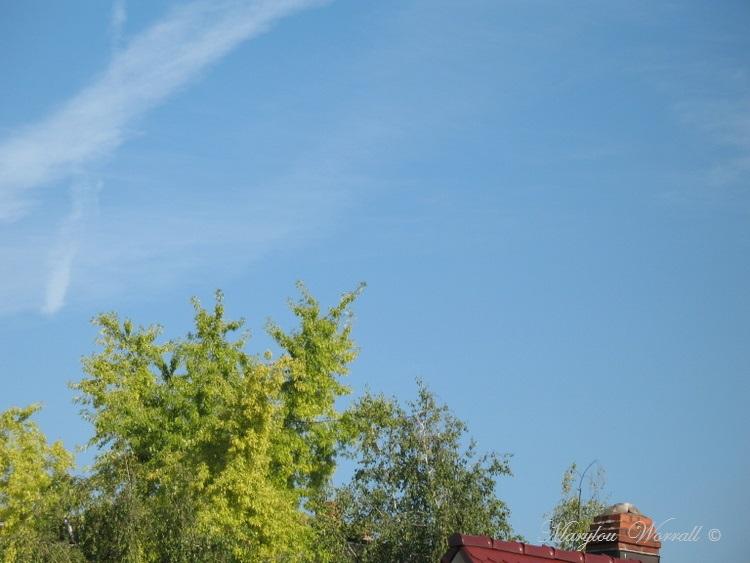 Ciel d'Alsace en cette journée de l'Assomption