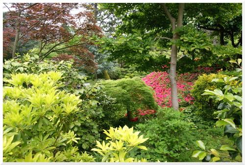 Mai 2015. Le jardin Albert Kahn Boulogne Billancourt