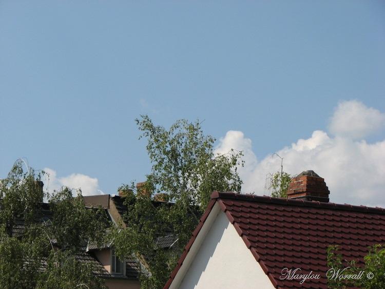 Ciel d'Alsace 422