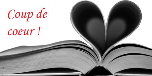 Virginie : Vos livres coups de coeur 2016, mes lectures 2017