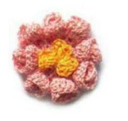 Fragments fleuris de Janvier ...