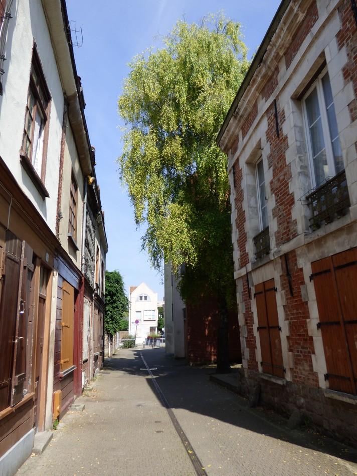 """Ce soir, sur M6 """"La rue des Allocs"""""""