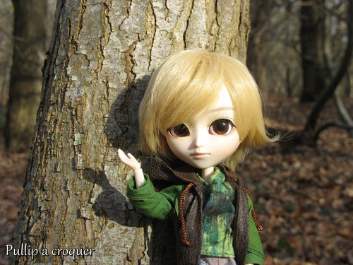 Promenons nous dans les bois ...