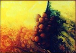 La vigne en dessin