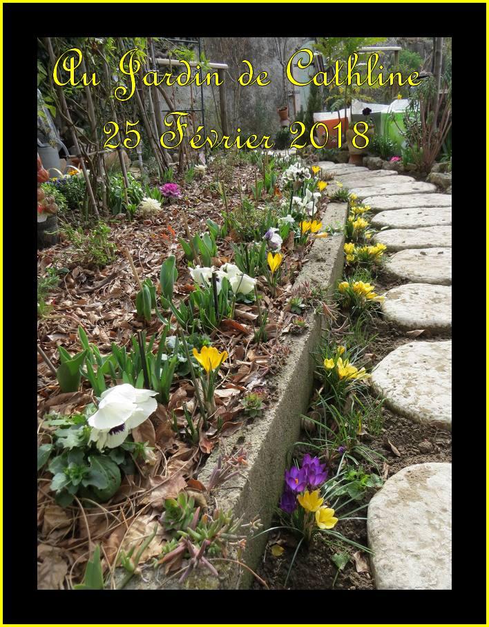 Balade au jardin et Avec la lune du 1er au 10 mars 2018