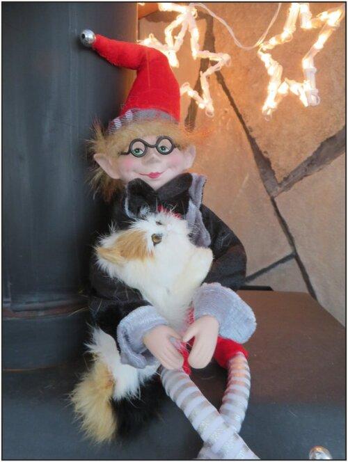 Lutin gentil joue avec son chat....