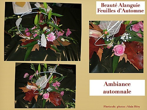 2012 10 23 beaute alanguie (7)