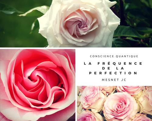 """Vos questions : peut-on parler de """"perfection"""" en évoquant l'être humain (ou son conjoint ) ?"""