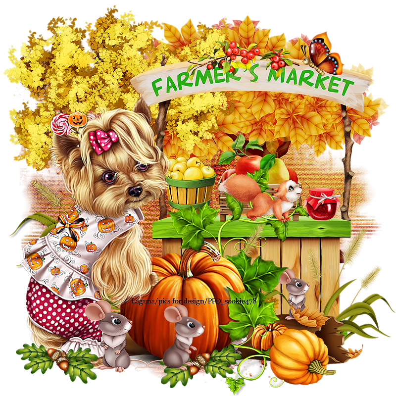 petit chien d automne