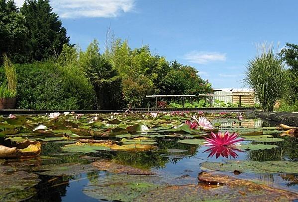Jardin-du-Prahor-8-08-12-IMG_0421.JPG