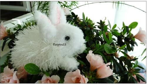 """""""Henry's Bunny"""" de  Sara Elisabeth kellner"""