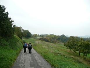 13 Oct. 2015   La Drôme des collines