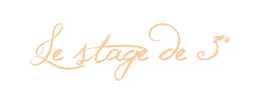 Le stage de 3°