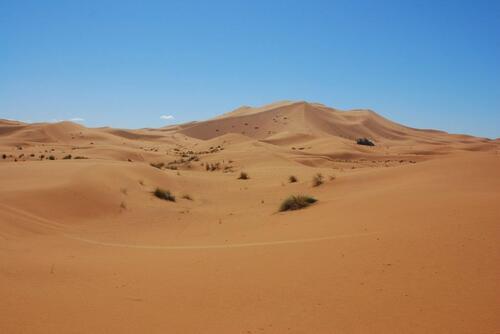 Que de belles dunes