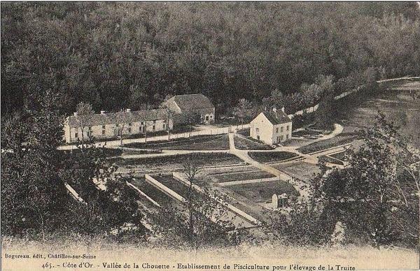 La pisciculture de la Chouette à Aisey sur Seine