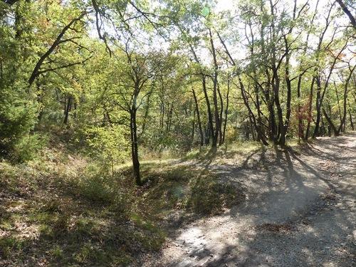La Forêt de Gréasque