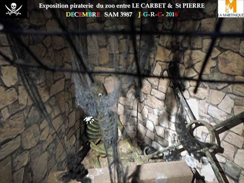 EXPO PIRATERIE ZOO DE MARTINIQUE: 2/2       D    26/02/2018
