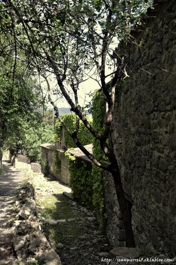 2015.05.15 Sauve, Oppidum de Lunel (département du Gard)