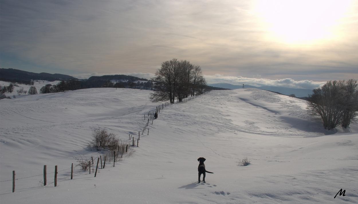 En revenant de la borne de Savoie