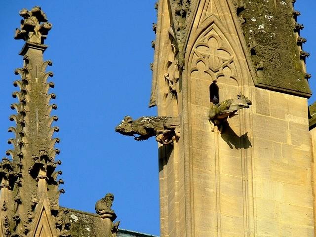 Gargouilles de Metz 17 Marc de Metz 2012