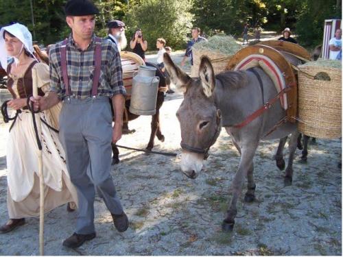 Fête des ânes