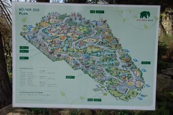 zoo cologne d50 2012 146