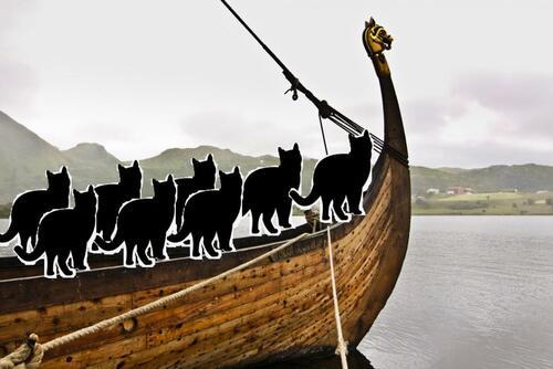 Les Vikings naviguaient avec  des chats