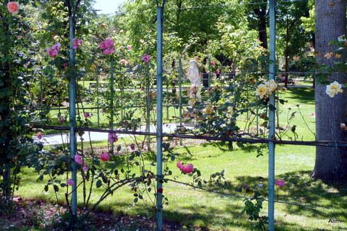 Thème des jardins en juin