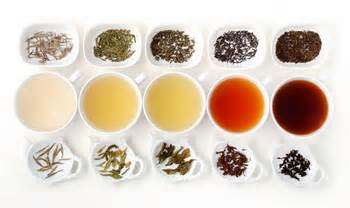 http://www.getkombucha.com/wp-content/uploads/2013/07/different-types-of-tea1.jpg