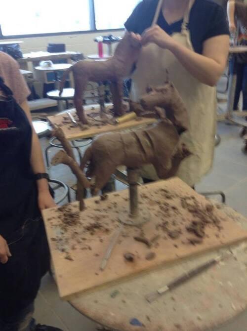 Anatomie tridimensionnelle: le cheval.