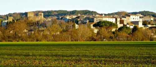 Aude - Pieusse
