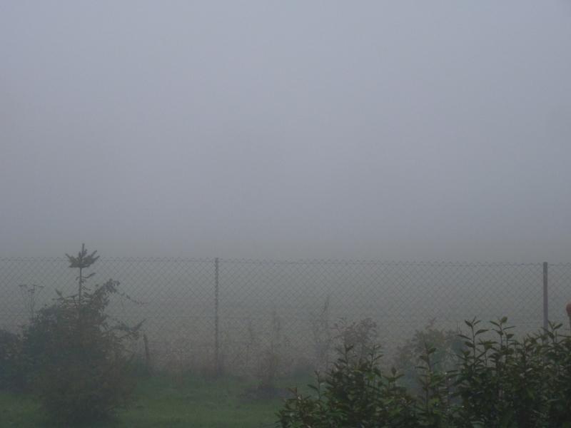 c est dans le brouillard qu une rencontre est belle