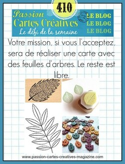 Passion Cartes Créatives #410