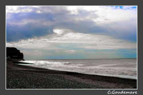 Criel sur Mer # 5