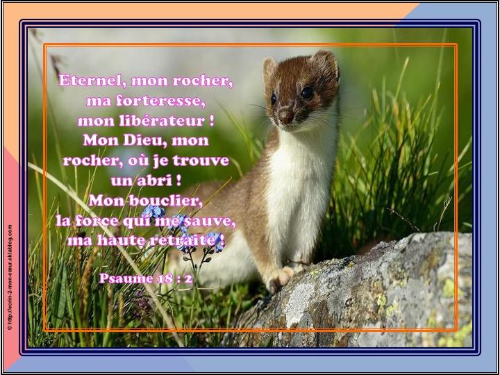 Eternel, mon rocher, ma forteresses, mon libérateur - Psaumes 18 : 2