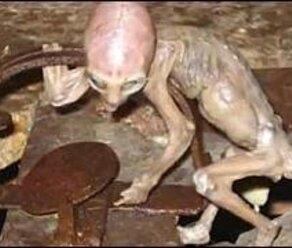 DES E.T. TOUT PETIT